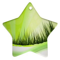 Green Background Wallpaper Texture Star Ornament (two Sides)
