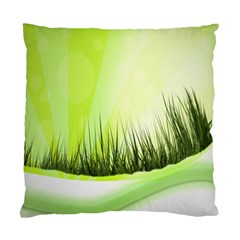 Green Background Wallpaper Texture Standard Cushion Case (two Sides)