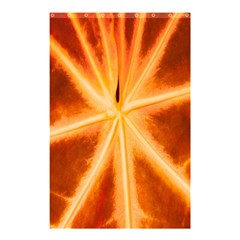 Red Leaf Macro Detail Shower Curtain 48  X 72  (small)
