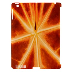 Red Leaf Macro Detail Apple Ipad 3/4 Hardshell Case (compatible With Smart Cover)