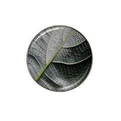 Leaf Detail Macro Of A Leaf Hat Clip Ball Marker (4 Pack)