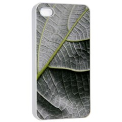 Leaf Detail Macro Of A Leaf Apple Iphone 4/4s Seamless Case (white)