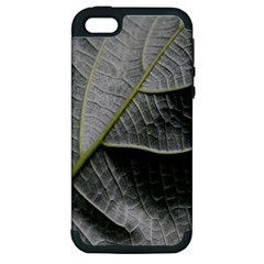 Leaf Detail Macro Of A Leaf Apple Iphone 5 Hardshell Case (pc+silicone)