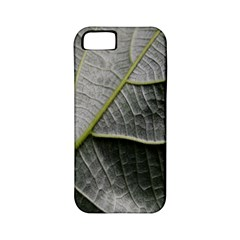 Leaf Detail Macro Of A Leaf Apple Iphone 5 Classic Hardshell Case (pc+silicone)