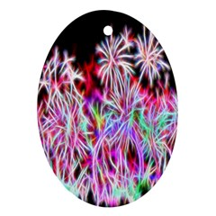 Fractal Fireworks Display Pattern Oval Ornament (two Sides)