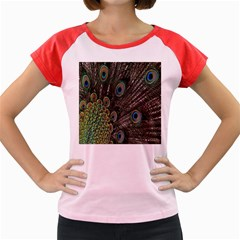 Close Up Of Peacock Feathers Women s Cap Sleeve T Shirt