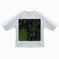 Close Up Of Peacock Feathers Infant/toddler T Shirts