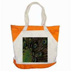 Close Up Of Peacock Feathers Accent Tote Bag