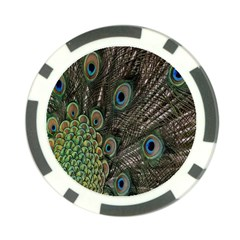 Close Up Of Peacock Feathers Poker Chip Card Guard