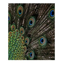 Close Up Of Peacock Feathers Shower Curtain 60  X 72  (medium)