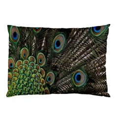 Close Up Of Peacock Feathers Pillow Case (two Sides)
