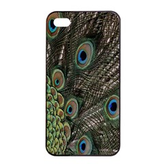 Close Up Of Peacock Feathers Apple Iphone 4/4s Seamless Case (black)