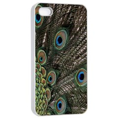 Close Up Of Peacock Feathers Apple Iphone 4/4s Seamless Case (white)
