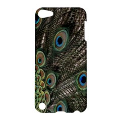 Close Up Of Peacock Feathers Apple Ipod Touch 5 Hardshell Case