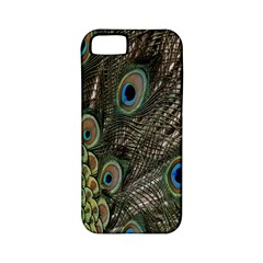 Close Up Of Peacock Feathers Apple Iphone 5 Classic Hardshell Case (pc+silicone)