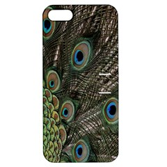 Close Up Of Peacock Feathers Apple Iphone 5 Hardshell Case With Stand