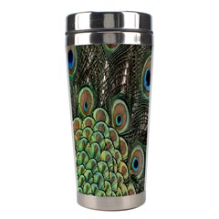 Close Up Of Peacock Feathers Stainless Steel Travel Tumblers