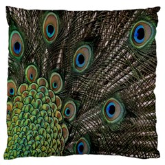 Close Up Of Peacock Feathers Standard Flano Cushion Case (one Side)