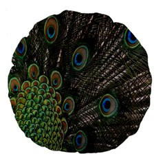Close Up Of Peacock Feathers Large 18  Premium Flano Round Cushions