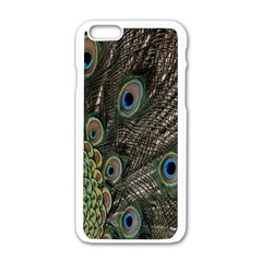 Close Up Of Peacock Feathers Apple Iphone 6/6s White Enamel Case
