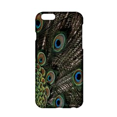 Close Up Of Peacock Feathers Apple Iphone 6/6s Hardshell Case