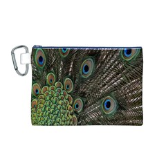 Close Up Of Peacock Feathers Canvas Cosmetic Bag (m)