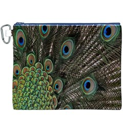Close Up Of Peacock Feathers Canvas Cosmetic Bag (xxxl)