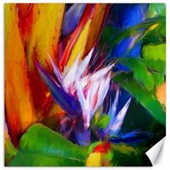 Palms02 Canvas 20  X 20