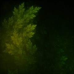 Beautiful Fractal Pines In The Misty Spring Night Magic Photo Cubes