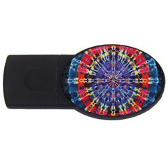 Circle Purple Green Tie Dye Kaleidoscope Opaque Color USB Flash Drive Oval (2 GB)