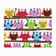 Funny Owls Sitting On A Branch Pattern Postcard Rainbow Small Glasses Cloth (2-Side)