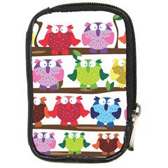 Funny Owls Sitting On A Branch Pattern Postcard Rainbow Compact Camera Cases
