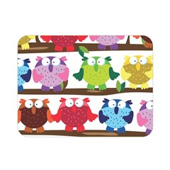 Funny Owls Sitting On A Branch Pattern Postcard Rainbow Double Sided Flano Blanket (Mini)