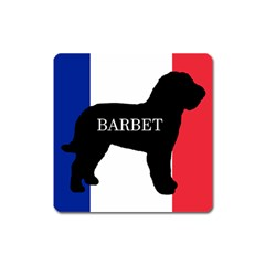 Barbet Name Silhouette on flag Square Magnet
