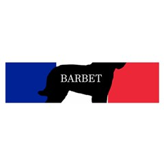 Barbet Name Silhouette on flag Satin Scarf (Oblong)