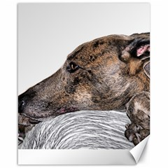 Greyhound Canvas 16  x 20