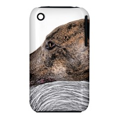 Greyhound iPhone 3S/3GS