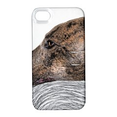 Greyhound Apple iPhone 4/4S Hardshell Case with Stand