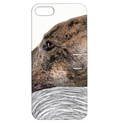 Greyhound Apple iPhone 5 Hardshell Case with Stand