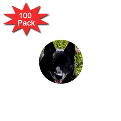Norwegian Buhund 1  Mini Buttons (100 pack)