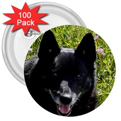 Norwegian Buhund 3  Buttons (100 pack)