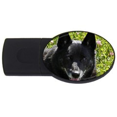 Norwegian Buhund USB Flash Drive Oval (2 GB)