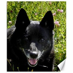 Norwegian Buhund Canvas 8  x 10