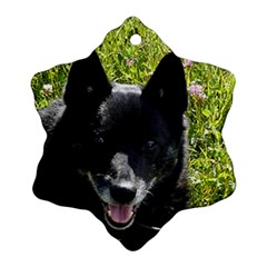 Norwegian Buhund Ornament (Snowflake)