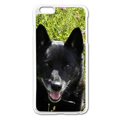 Norwegian Buhund Apple iPhone 6 Plus/6S Plus Enamel White Case
