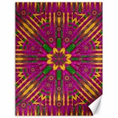 Feather Stars Mandala Pop Art Canvas 18  X 24