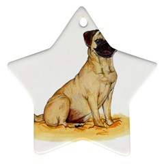 Pug Color Drawing Star Ornament (Two Sides)
