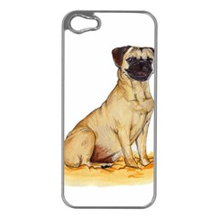 Pug Color Drawing Apple iPhone 5 Case (Silver)