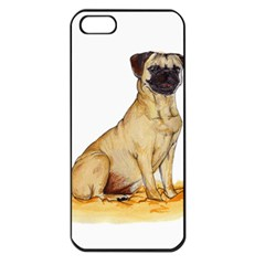 Pug Color Drawing Apple iPhone 5 Seamless Case (Black)