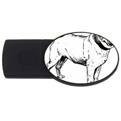 Pug Drawing USB Flash Drive Oval (4 GB)